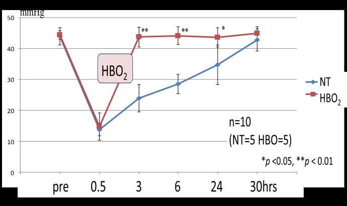 図1. 損傷筋内の酸素濃度